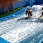 olas-surfclubb